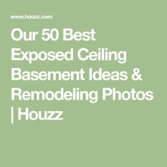 Our 50 Best Exposed Ceiling Basement Ideas & Remodeling Photos | Houzz
