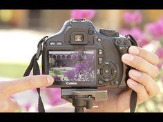Curso de Fotografía Básica - Parte 3 de 12 - YouTube