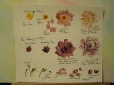Rózsák utamból | ARTchat - Porcelán Art Plus (korábban Chatty tanárok és művészek)