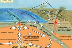 Plate Tectonics Diagram   cartoon of oceanic plate subducting under a continental plate
