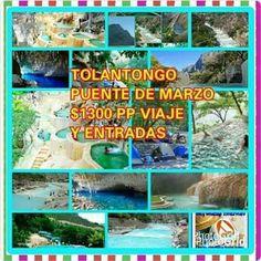 Grutas de Tolantongo 18 al 21 Puente de Marzo $ 1300 pp viaje y entrada reserva ya