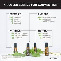 Keep calm and energized with these 4 Roller Blends for Convention!