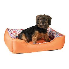 Pamper your pet with a new plush and colorful pet bed from #BigLots! #PetsRPeople2