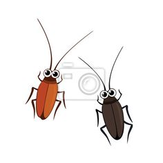 Wall Mural cockroaches - cockroach - insect • PIXERSIZE.com