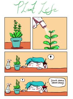 the exciting life of owning a plant