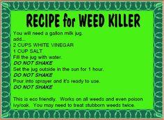 Organic weed control.