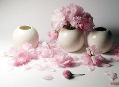 White vase, pink flowers