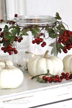 White pumpkins & red berries