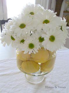 Lemons and daises