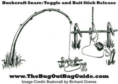 Being able to #forage a meal is one of the most important #bushcraft skills you can learn. Learn how to use your bushcraft tools to feed yourself off the land.
