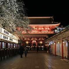 Asakusa my love Asakusa mon amour Shots, Night, My Love, Travel, Instagram, Cherry Blossom, Love, Spring, Viajes