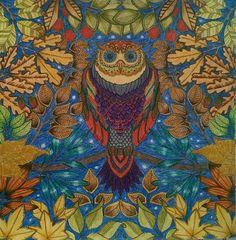 Baykuşum Gizli bahçe Secret Garden Johanna Basford - owl