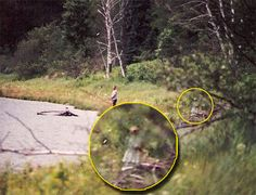 Even if you don't believe in paranormal phenomena like ghosts or Bigfoot, these photos will make you think twice. Catch a glimpse of some spooky pictures. Real Ghost Pictures, Ghost Images, Creepy Pictures, Ghost Photos, Scary Stories, Ghost Stories, Spirit Ghost, Ghost Hauntings, Ghost And Ghouls
