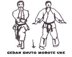 Resultado de imagen de shuto morote uke