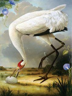 Kevin Sloan,  Birds of America (Whooping Crane) - 2010