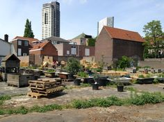 Stadstuin (City Garden) De Bergen, Eindhoven, Netherlands