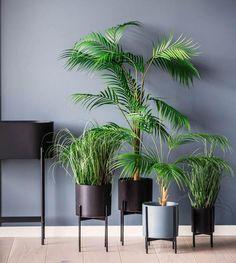 #interiør #vår #2020 #inspirasjon | Kremmerhuset Nordic Living, Most Beautiful Pictures, Planter Pots, Told You So, Plants, Number, Decoration, Image, Ideas