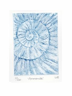 Etching no.27 of an ammonite fossil in an edition of 100 £30.00