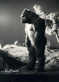 Rick Baker as King Kong Classic Monster Movies, Giant Monster Movies, Classic Monsters, Cool Monsters, Horror Monsters, King Kong, Godzilla, Monster Squad, Fiction Movies