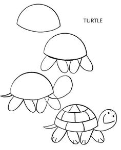 How to draw a turtle ✏ site includes, pets: dogs, cats, birds, fish, etc