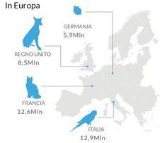 L'Italia (non) è amica degli animali: record di uccellini in gabbia e pesci negli acquari