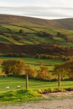 Northern Ireland, County Tyrone, Sperrin Mountains, Glennelly Valley.