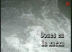 1999-04-18 DONES A LA XARXA Víctor Martínez Realizador Audiovisual — WordPress