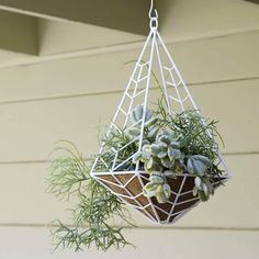 Unique & Modern DIY Outdoor Hanging Planter Ideas For Your Garden Modern Chevron Patterned Metal Planter Hanging Planters Outdoor, Plants For Hanging Baskets, Metal Planters, Porch Planter, Diy Hanging, Plant Basket, Fern Plant, Plant Design, Garden Design