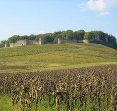 Construit à une époque où la Franche-Comté fait partie du St Empire romain germanique, le château d'Arlay est l'une des plus grandes places de la région. Il est pris et ravagé par les armées de Louis XI en 1479 suite à la défaite de son ennemi, Charles le Téméraire, duc de Bourgogne. Au 18°s un château est construit à côté d'imposantes ruines médiévales. Le chateau et le parc se visitent.