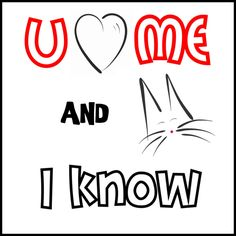 You Love Me    #cats #gatos #gatetes #catslovers #catlover #love #amor #meow #miau