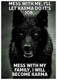 Mess with me and I will let karma do it's job. Mess with my family and I become karma. (ALK: 'family' can be anyone I vaguely care about whom I feel is currently defenceless against someone cruel! Motivational Quotes, Funny Quotes, Inspirational Quotes, Humor Quotes, Funny Humor, Qoutes, Karma Quotes, Be Wolf, Great Quotes