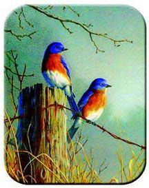 blue bird decorations   ... Decor, Bird Gifts & Home Office Elegant Decor. Book Ends, Clocks