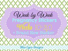 Week by Week Pregnancy Stickers,Pregnancy Bump stickers,24 pregnancy stickers,Pregnancy Reveal, Pregnancy Photo Ideas,Weekly Stickers,P1 on Etsy, $32.00