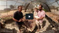 What's more important? To go local ... or organic?   Lexicon of Sustainability   PBS Food