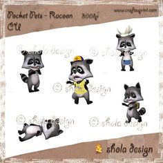 Pocket Pets - Racoon by Susanne Schroer Pockets Pets are alive! Here is one of them - the rascal Racoon. 5 racoons as high resolution png.