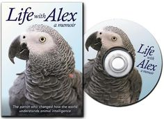 Life With Alex: The Movie releases October 1st, 2012