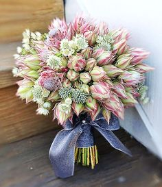 Pretty in Pink serruria (blushing bride) posy with astrantia, tied with wide ribbon