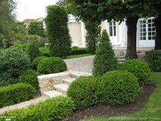 Projet : Création d'un jardin à base de buis, de rhododendrons et de charmes. - Côté Maison Projets