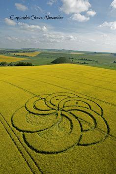 c Crop Circles, Labyrinth Maze, Nazca Lines, Fibonacci Spiral, Alien Art, Ancient Aliens, Flower Of Life, Land Art, Circle Design