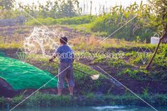 #Chinese #farmer watering his fields – CreativityGems