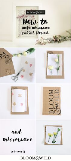 118 Best Flower Press And Paper To Try Images Pressed Flower Art