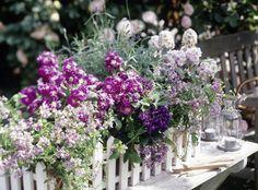 Dieser Blumenkasten ist perfekt für alle, die ihren Balkon erst nach Feierabend genießen können.