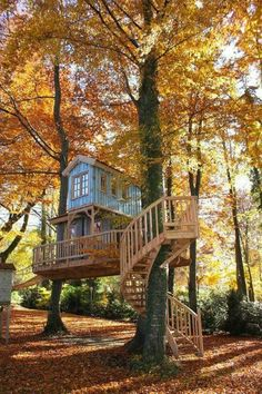 This two-story tree house stands on the shore of a lake in the south of Munich. - This two-story tree house stands on the shore of a lake in the south of Munich. Treehouse Living, Building A Treehouse, Treehouse Kids, Backyard Treehouse, Cool Tree Houses, Small Houses, Tree House Designs, Beech Tree, Tree Tops