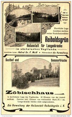 Original-Werbung/ Anzeige 1905 - REIBOLDSGRÜN / ZÖBISCHHAUS - ca. 100 x 155 mm