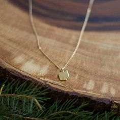 "State Necklaces...keep it close to your heart. Base metals 16"" chain Gold or Silver *Sorry Michigan, your upper pennisula causes issues* GOLD: 18k gold-plated brass charm on a 14/20 gold-filled chain"