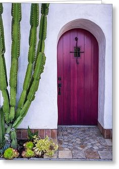 Magenta Door Greeting Card by Thomas Hall Photography