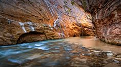 https://flic.kr/p/xvEM4N | Zion Narrows | Thanks for taken the time to look at my photos. Feel free to leave feedback. To see more please visit my web site www.daviddahlenburg.com