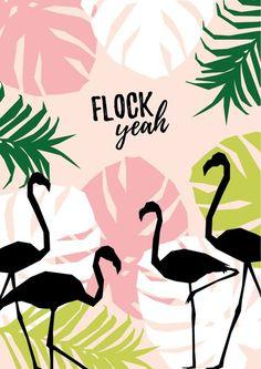 'Flock yeah' printable flamingo wall art - click through for your free poster! Flamingo Party, Flamingo T Shirt, Flamingo Logo, Flamingo Cake, Flamingo Decor, Deco Surf, Wal Art, Flamingo Wallpaper, Pink Flamingos