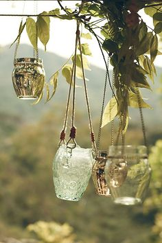 Fig Jar Lanterns from Anthropologie. Love these for our backyard!