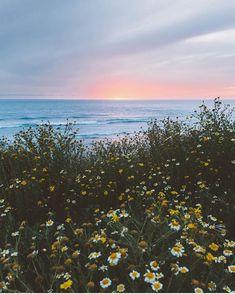 Never met a sunset we didn't like ✨ : @ravivora